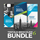 Trifold Brochure Bundle - GraphicRiver Item for Sale