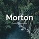 Morton Creative Google Slide Template - GraphicRiver Item for Sale