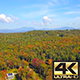 Rising Over Vermont Forest In Fall - VideoHive Item for Sale