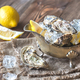 Raw oysters in the gravy boat - PhotoDune Item for Sale