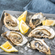 Raw oysters on the gray background - PhotoDune Item for Sale