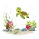 Underwater Landscape With Turtle - GraphicRiver Item for Sale