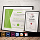 Bundle Certificate Offer - GraphicRiver Item for Sale