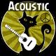 Acoustic Folk Happy Background