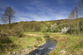 The Geleenbeek river - PhotoDune Item for Sale