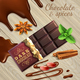 Chocolate And Spices Realistic Illustration