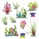 Set Of Different Underwater Plants