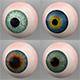 Human Eyes 3D Models