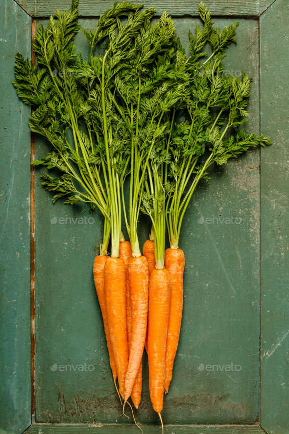 fresh carrot bunch - Stock Photo - Images