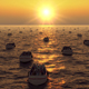 Many Boats with People Swim on Sunset - VideoHive Item for Sale