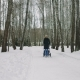 Mother with Baby Stroller Enjoying Motherhood in Winter Forest - VideoHive Item for Sale
