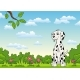 Dalmatian - GraphicRiver Item for Sale