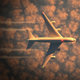 Airplane Flying on Sunset 4k - VideoHive Item for Sale