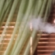 Young Man Smoking Hookah - VideoHive Item for Sale