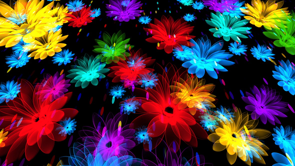 Colorful Flowers By As 100 Videohive