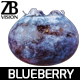 Blueberry 003 - 3DOcean Item for Sale
