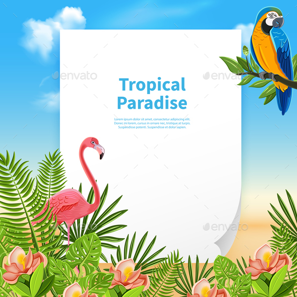 Summer Paradise Background Composition - Backgrounds Decorative