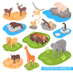 Isometric Zoo Animal Set