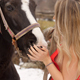 Sexy Woman and Horse - VideoHive Item for Sale