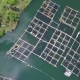Aerial: Fish Farm in Lake - VideoHive Item for Sale