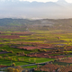 Beutiful sunset over colored agricultiral fields - PhotoDune Item for Sale