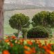 Park in Hierapolis near Pamukkale, Turkey - PhotoDune Item for Sale