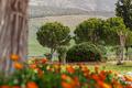 Park in Hierapolis near Pamukkale, Turkey - PhotoDune Item for Sale
