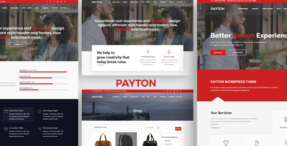 Payton - Business Creative WordPress Multipurpose Theme