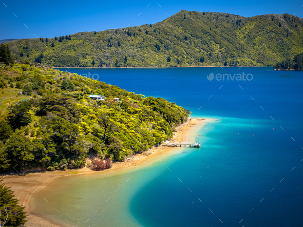 Green forest and turquoise blue water in Marlborough sounds - Stock Photo - Images