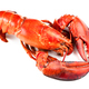 Red lobster - PhotoDune Item for Sale
