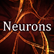 Neurons - VideoHive Item for Sale