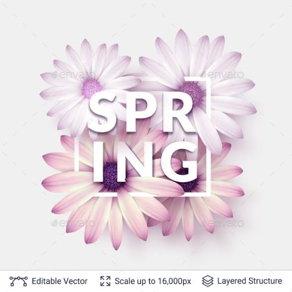 Spring Season Flowers and Text. - Seasons/Holidays Conceptual