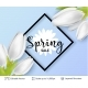Spring Season White Tulips and Sale Text. - GraphicRiver Item for Sale