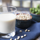 Fresh Glass of Soy Milk - PhotoDune Item for Sale