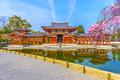 Byodo-in Temple, Japan - PhotoDune Item for Sale