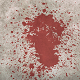 Blood Stab