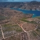 Aerial View of Primosten Vineyards, Croatia - VideoHive Item for Sale