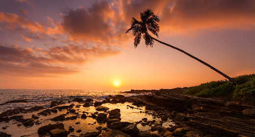 Sunsets on tropical beaches