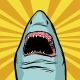 Shark Ocean Predator