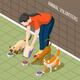 Cats Volunteer Isometric Background