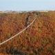 Flight Over Suspension Footbridge Geierlay, Germany - VideoHive Item for Sale