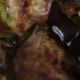 Grilled Vegetables - VideoHive Item for Sale