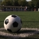 Soccer Ball on Green Grass Playground Corner - VideoHive Item for Sale