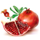 Pomegranate Fruits - GraphicRiver Item for Sale