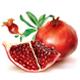 Pomegranate Fruits - GraphicRiver Item for Sale