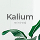Kalium Minimal Powerpoint Template - GraphicRiver Item for Sale