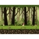 Seamless Cartoon Forest Background