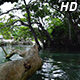 Blue Lagoon Pool Vanuatu - VideoHive Item for Sale