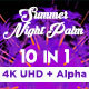 Summer Night Palm Vj Loops Pack - VideoHive Item for Sale