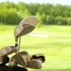 Golf Clubs and Bals on Golf Field - VideoHive Item for Sale